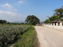 LAND FOR SALE IN HIN LEK FAI – UP AND COMING AREA