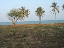 10 RAI OF GREAT WITH SANDED BEACHFRONT LAND